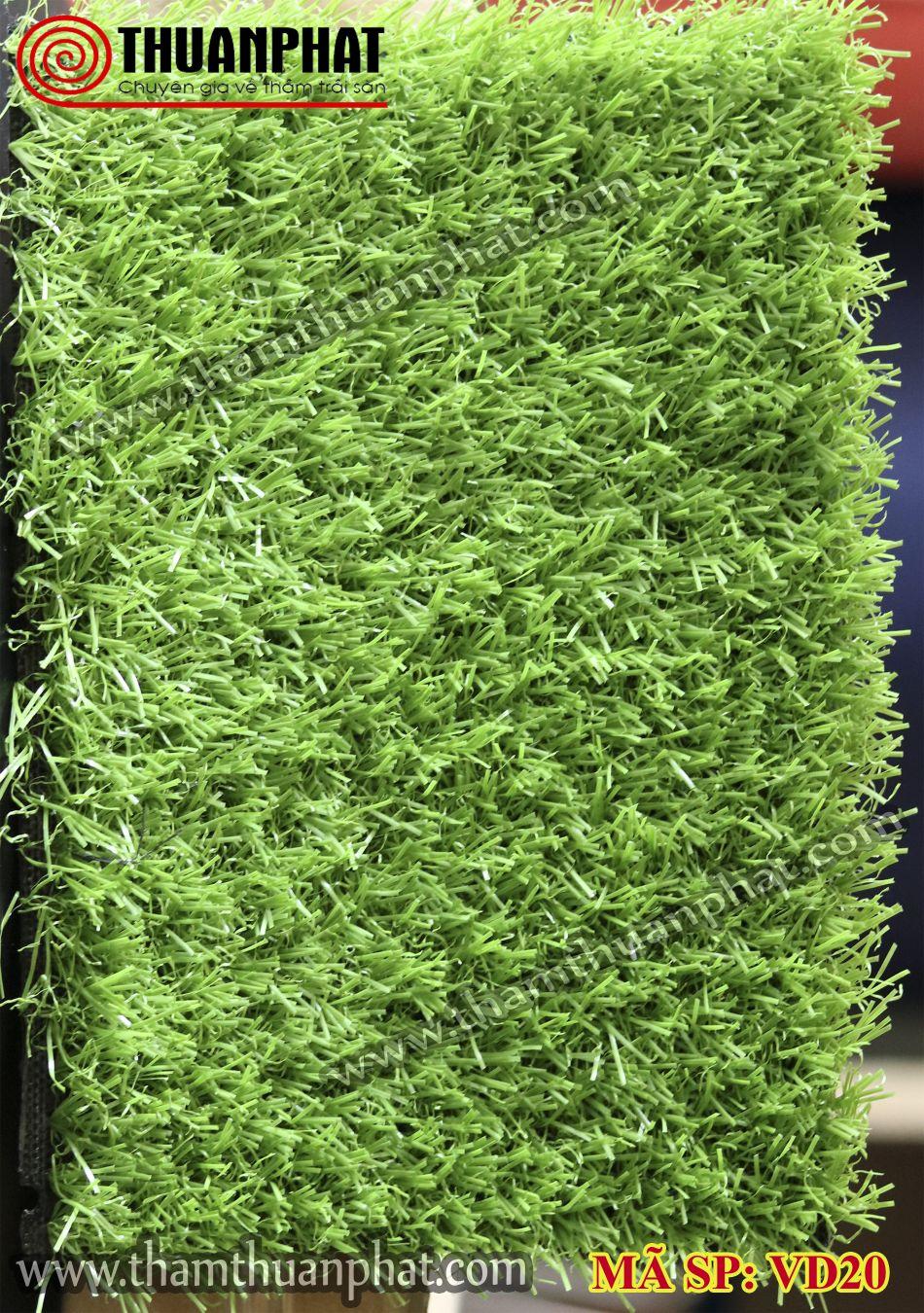 Thảm cỏ nhân tạo VD20