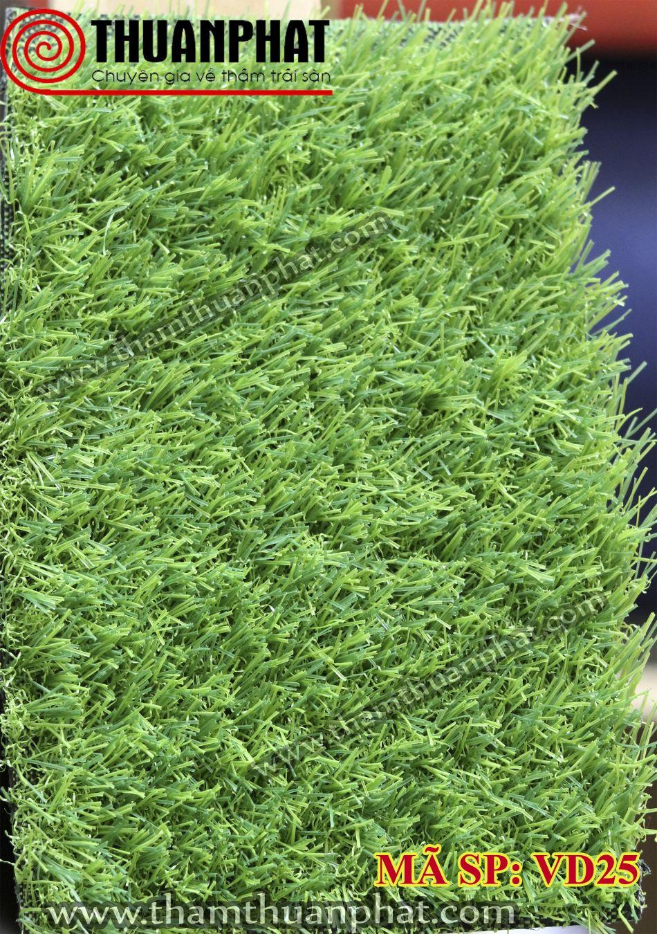 Thảm cỏ nhân tạo VD25